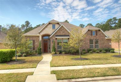Cypress Single Family Home For Sale: 12929 Lake Parc Bend Drive