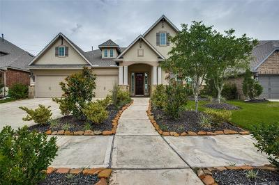 Missouri City Single Family Home For Sale: 2631 Lazy Vine Lane