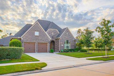Conroe Single Family Home For Sale: 17144 Knoll Dale Trail
