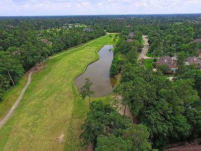 The Woodlands Single Family Home For Sale: 46 Windhaven Drive