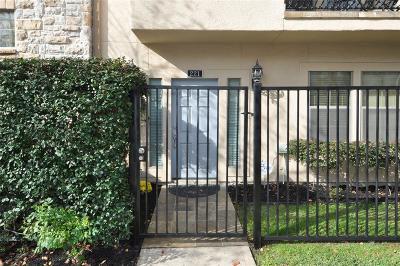 Houston Condo/Townhouse For Sale: 221 Birdsall Street