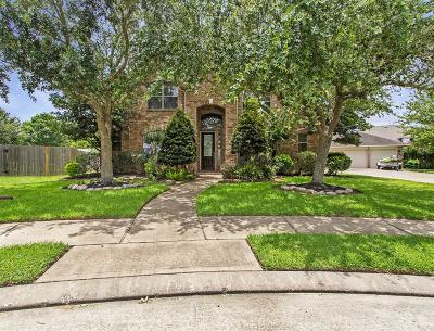 League City Single Family Home For Sale: 6132 Ramsay Lane