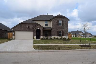 Texas City Single Family Home For Sale: 12602 Solano Drive
