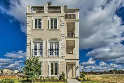 Houston Single Family Home For Sale: 3619 Somerset York