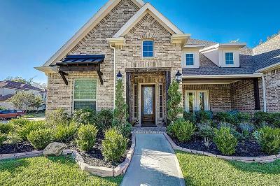 Missouri City Single Family Home For Sale: 2 S Flamingo Drive