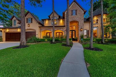 Katy Single Family Home For Sale: 4807 Hollowvine Lane