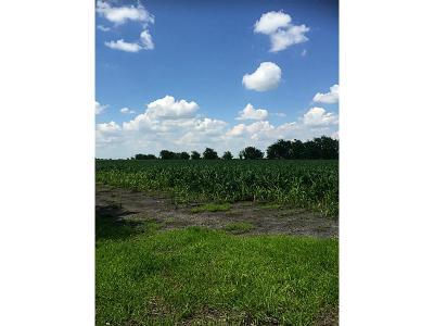 Farm & Ranch For Sale: Fm 1162