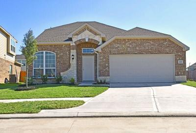 Alvin Single Family Home For Sale: 5175 Dry Hollow Lane