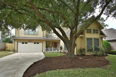 Tomball Single Family Home For Sale: 22911 Black Willow Drive