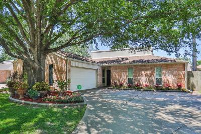 Houston Single Family Home For Sale: 4759 Eagle Trail Drive