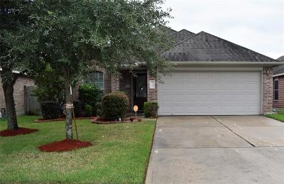 Katy Single Family Home For Sale: 20911 Barbons Heath Court