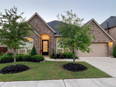 Single Family Home For Sale: 1618 Bayou Bend Lane