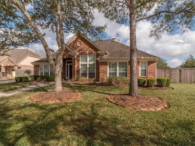 Friendswood Single Family Home For Sale: 3205 Cedar Ridge Court