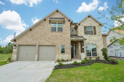Manvel Single Family Home For Sale: 3317 Flagstone Drive