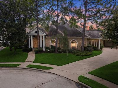 Houston Single Family Home For Sale: 2202 Villa Rose Drive