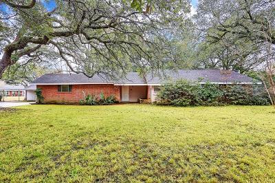 Missouri City Single Family Home For Sale: 1303 Adams Street