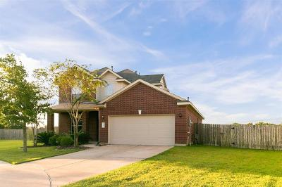 Pearland Single Family Home For Sale: 7204 Valentine Lane