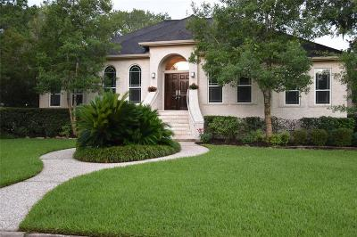 Friendswood Single Family Home For Sale: 501 Providence Drive