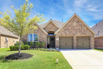 Pearland Single Family Home For Sale: 2985 Woodson Terrace Lane