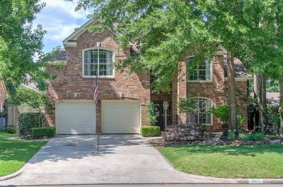 Houston Single Family Home For Sale: 3927 Echo Mountain Drive