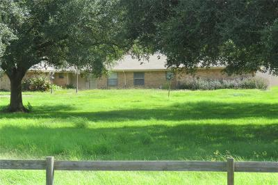 Angleton Single Family Home For Sale: 2111 County Road 428