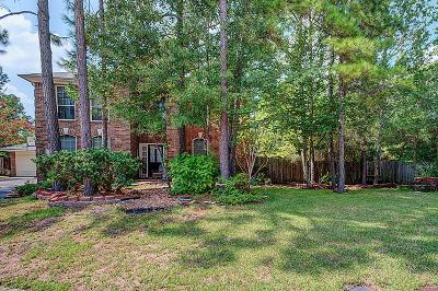 The Woodlands Single Family Home For Sale: 18 Larksberry Place