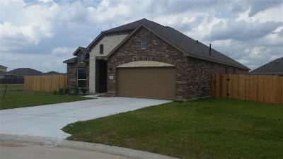 Tomball Single Family Home For Sale: 23014 Striped Maple Court