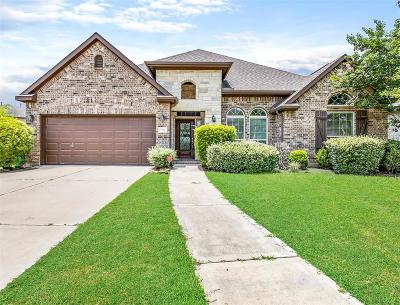 Sugar Land Single Family Home For Sale: 5367 Blue Mountain Lane