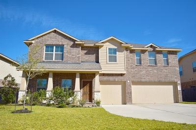 Tomball Single Family Home For Sale: 22810 Dale River Road