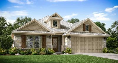 Katy Single Family Home For Sale: 28519 Rustic Branch Lane