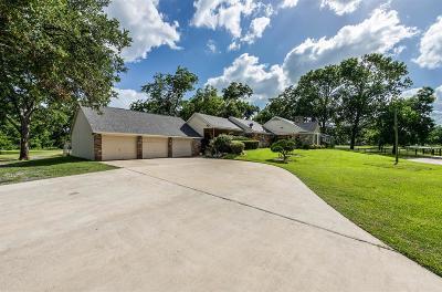 Rosenberg Single Family Home For Sale: 605 Perry Street
