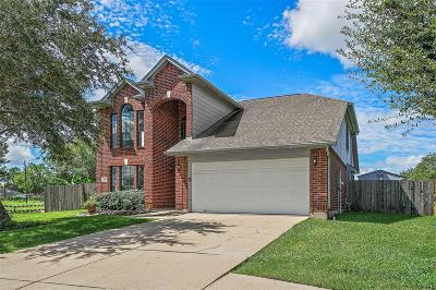 Friendswood Single Family Home For Sale: 3535 Running Tide