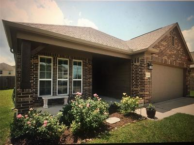 Rosenberg Single Family Home For Sale: 4706 Beechwood Drive
