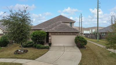 Eagle Springs Single Family Home For Sale: 12939 Madison Boulder Lane