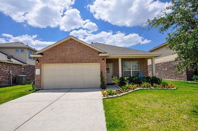 Porter Single Family Home For Sale: 22554 Stillwater Valley Lane