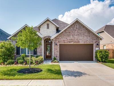 Katy Single Family Home For Sale: 24618 Heirloom Lane