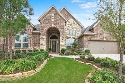 Montgomery County Single Family Home For Sale: 26910 Millsbridge Drive