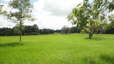 New Ulm Farm & Ranch For Sale: 1025 Piper League Rd