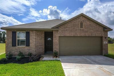 Houston Single Family Home For Sale: 7414 Senfronia Hills Drive