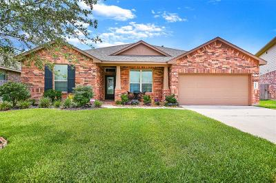Katy Single Family Home For Sale: 4410 Brenta Mountain Lane
