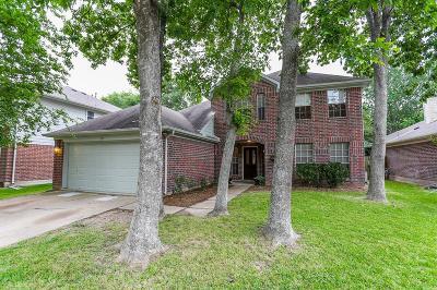 Sugar Land Single Family Home For Sale: 3119 Summerfield Ridge Court