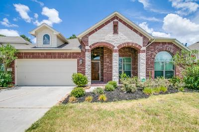 Tomball Single Family Home For Sale: 13102 Chatfield Manor Lane