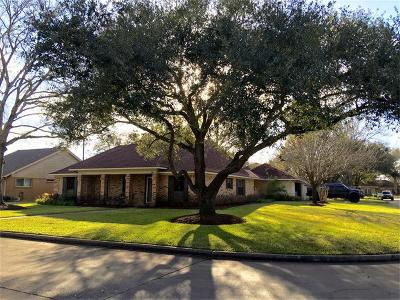 Katy Single Family Home For Sale: 807 Eva Lane