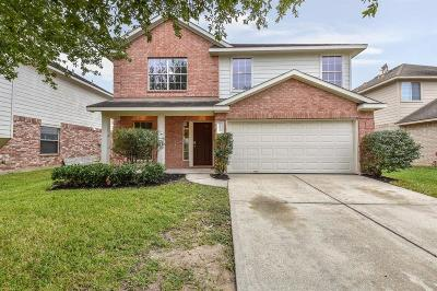 Houston Single Family Home For Sale: 14923 Forest Enclave Lane