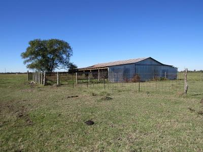 Bellville Farm & Ranch For Sale: 7463 Highway 159 E