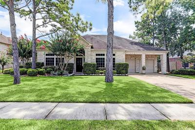 Friendswood Single Family Home For Sale: 709 Woodview Drive