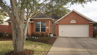 Katy Single Family Home For Sale: 20523 Terra Springs Drive