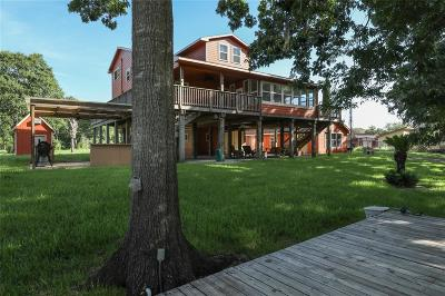 Brazoria Single Family Home For Sale: 4885 County Road 747a