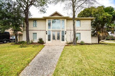 Houston Single Family Home For Sale: 10827 Braesridge Drive