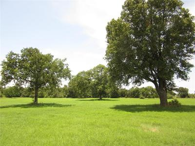 Fayette County Country Home/Acreage For Sale: 00000 Allen Road Loop